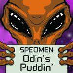 DFW Vapors - Odin's Puddin'